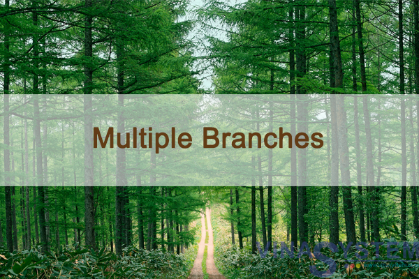 Multiple Branches in SAP Business One