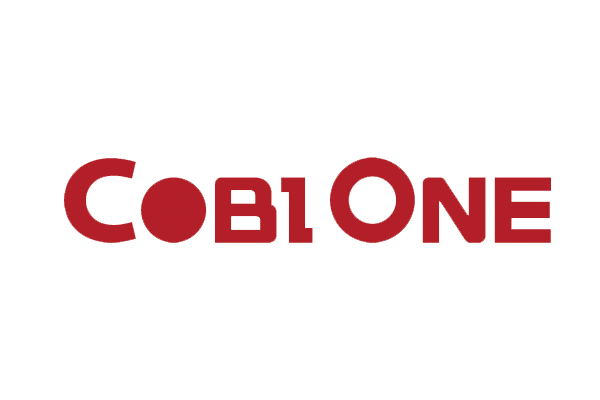 Vina System has implemented ERP - SAP Business One for COBI ONE Co., Ltd.